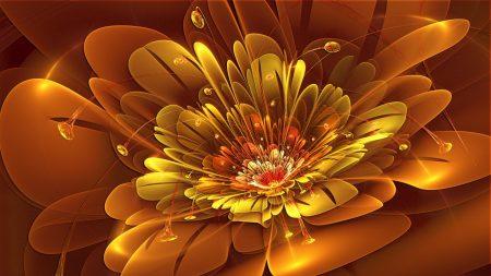 flower, patterns, light