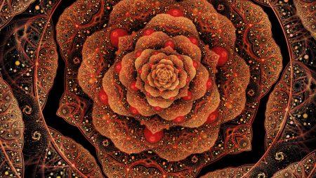 flower, patterns, petals
