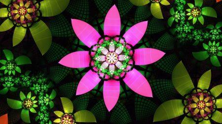 flower, petals, bright