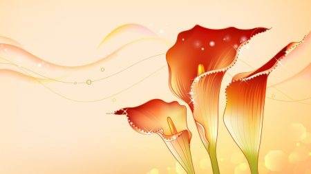flower, shine, pattern