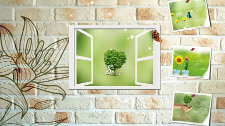 flower, wall, greeting cards