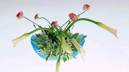 flowers, arrangement, vase