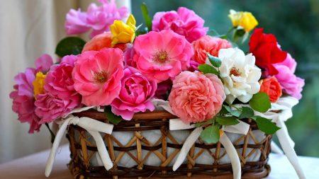 flowers, basket, bouquet