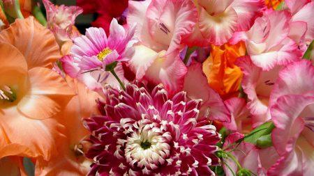 flowers, bouquet, bright