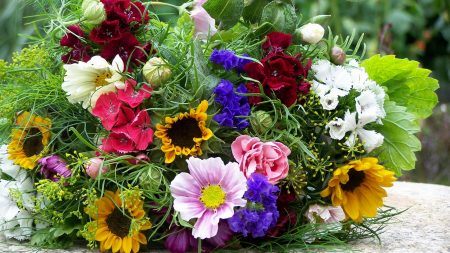 flowers, bouquets, colorful
