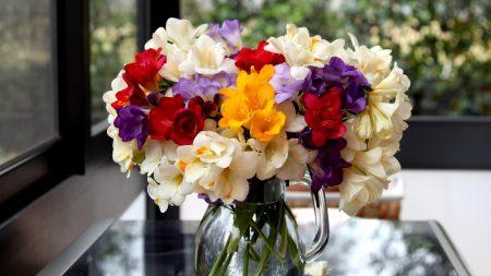 flowers, bouquets, pot