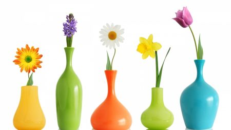 flowers, daisy, daffodil