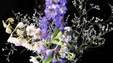 flowers, flower, vase