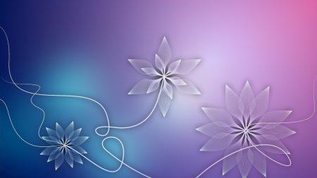 flowers, graphic, light