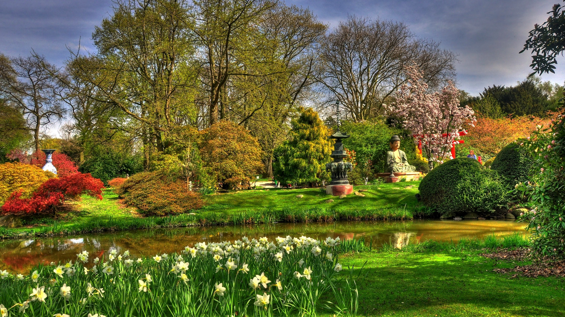 Download Wallpaper 1920x1080 Flowers Narcissuses Pond Garden