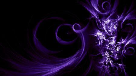 flowers, patterns, purple