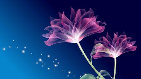 flowers, petals, leaves
