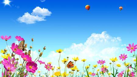 flowers, sky, butterflies