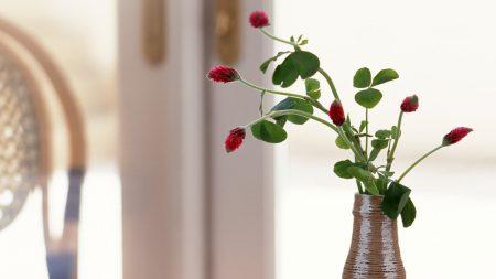 flowers, small, vase