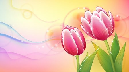 flowers, tulip, background
