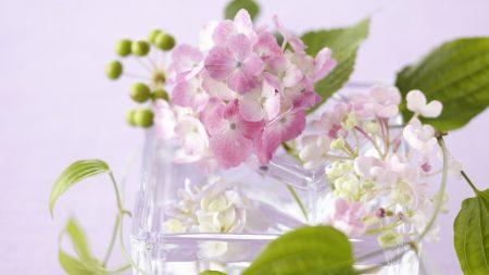 flowers, vase, glass