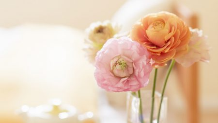 flowers, vase, stems