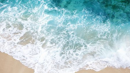 foam, wave, coast