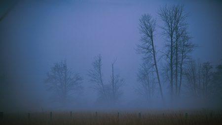 fog, haze, veil