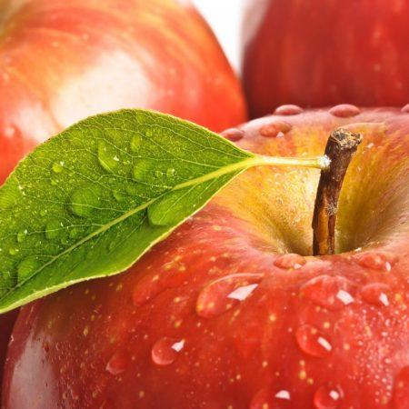 fruit, leaf, red
