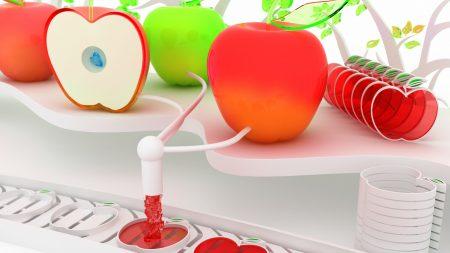 fruits, apples, mechanism