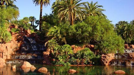 garden, falls, palm trees