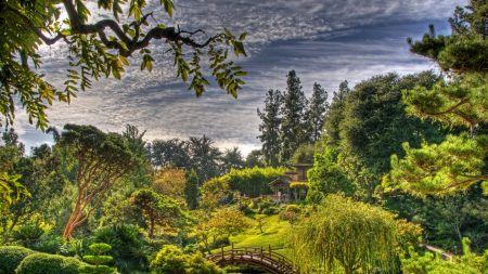 garden, sky, clouds