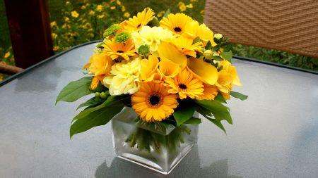 gerbera, calla lilies, flowers