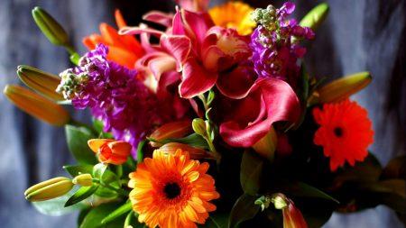 gerbera, calla lilies, lily