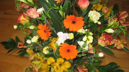 gerbera, carnations, flowers