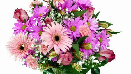 gerbera, chrysanthemums, carnations