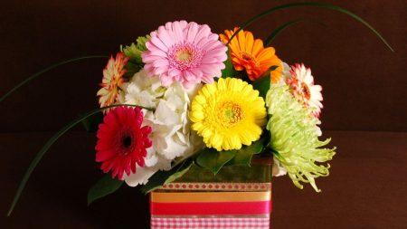 gerbera, hydrangea, chrysanthemums