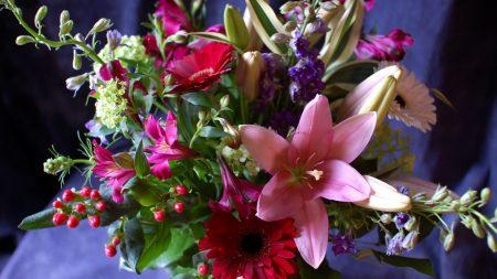 gerbera, lily, alstroemeria