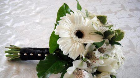 gerbera, roses, alstroemeria