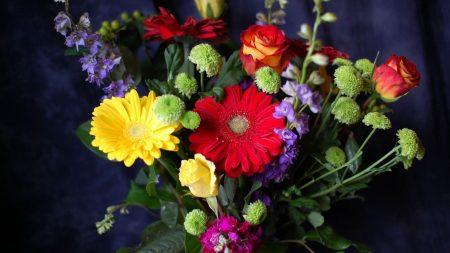 gerbera, roses, chrysanthemums