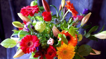 gerbera, roses, hydrangea