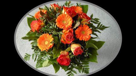 gerbera, roses, leaves