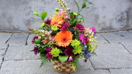 gerberas, chrysanthemums, flowers