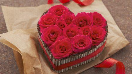 gift, box, roses