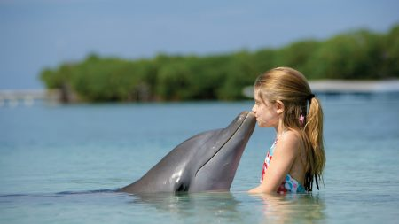 girl, child, dolphin
