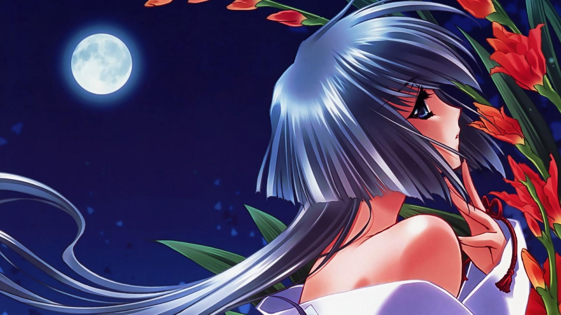Download Wallpaper 1920x1080 Girl Pin Up Moon Flowers Night