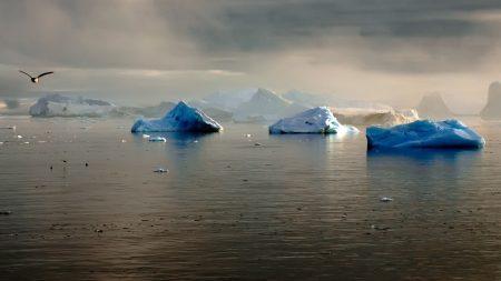 glaciers, antarctica, drift