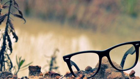glasses, lenses, rocks