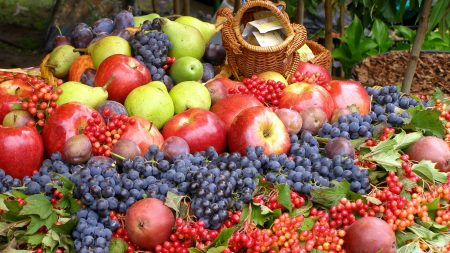 grapes, apples, much