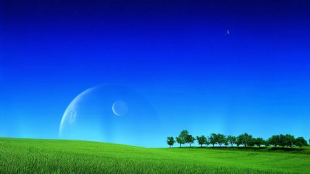 grass, greens, field