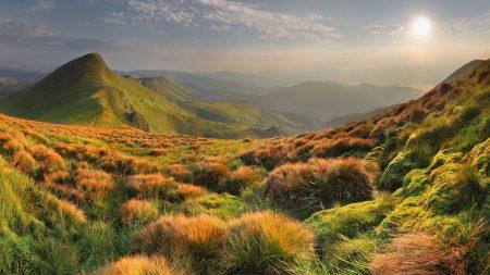 grass, mountains, evening