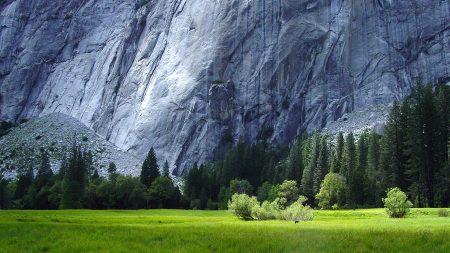 grass, mountains, piedmont