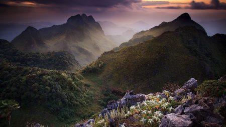 grass, rocks, mountains