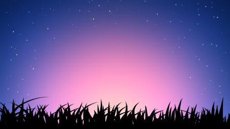grass, sky, light