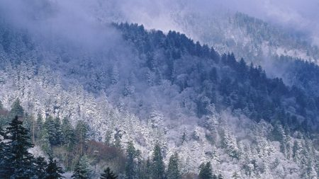 great smoky mountains, tennessee, mountains